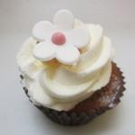 ニューヨークカップケーキ - ベリーショートケーキ