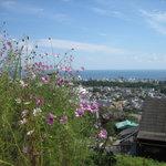 2505056 - 景観の湯から見る別府市街