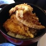 佐賀 - セットのシロギス丼