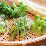 貴匠庵 - 春には山菜を使用した天せいろをご用意いたします