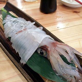 【活イカ】【鮮魚】【生パスタ】【ピザ】4つのこだわり自慢!