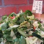 ファームレストランまきば - 牛乳豆腐のマリネ風サラダ