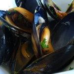 お肉とワイン 関内ビストロ ZIP - ムール貝のワイン蒸し
