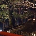 25343867 - 荒池の夜景