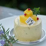 2536530 - ケーキラボ・マグネット ハジルとマンゴーのムース