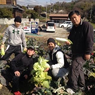 ◆産地直送◆やなもり農園のこだわり野菜!旬の食材で焼野菜!