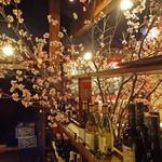 25413218 - 桜が満開です!!