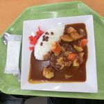 千葉市動物公園 森のレストラン - ハンバーグカレー