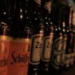 Pumpkin Rocks - 世界各国のビールが揃ってます!