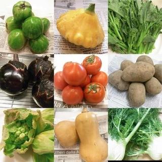 契約農家直送の新鮮野菜!素材本来の味と香りをお楽しみ下さい!