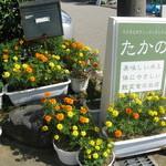 健康食工房 たかの - 金沢市でこだわりの自然食穀菜食のレストラン マクロビオティック「健康食工房たかの」のお店の周りは鮮やかなお花がいっぱい、お客様を可愛いお花がお迎えいたします。