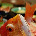 坂本屋 - 四季の中で最も漁が豊富で、最高に美味しく味わえるのが春と秋です。今のこの時期にしか味わえない海鮮会席を是非ご満喫してください。
