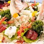 珊瑚礁 - 特別企画メニュー【旬の魚介類の活造り大皿盛りコース】