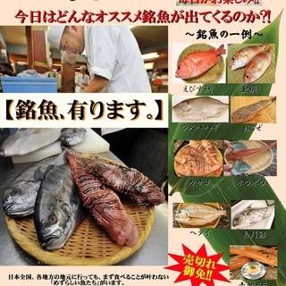 M三郎さん・たむけんも絶賛!毎日直送で送られてくる新鮮な銘魚