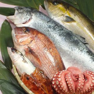 旬の鮮魚をリーズナブルな価格でご提供します♪