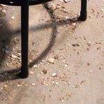 天ぷら かずき - 床はあさりの殻だらけ
