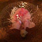 立ち飲み七助 - 「シマアジの刺身」350円