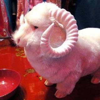 羊一頭丸ごとコースあり