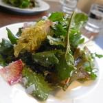 ウィウィ - ランチにはサラダたついています。 鎌倉野菜が多用されてました。