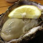 磯じま - 岩牡蠣(男鹿)