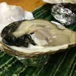 磯じま - 岩ガキ(厚岸)