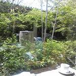 daininguryuu - 席から撮影した庭