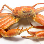 太助寿し - 冬季には活けの松葉、越前蟹が入荷