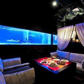 【個室】サメが優雅に泳ぐ水槽