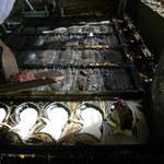 鯛焼工房 やきやきや - 調理風景