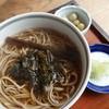 蕎麦 やま花 - 料理写真:行者ニンニク蕎麦¥700)行者ニンニクは醬油漬け。