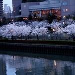 25912496 - 帝国ホテルの前は、大川(旧淀川)