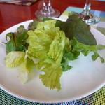 タートバン - グリーンサラダ