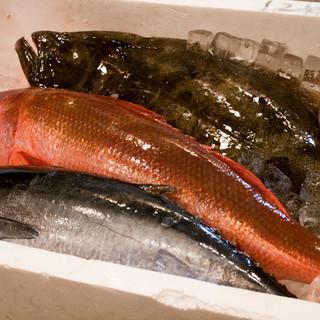 旨くて新鮮な魚が食べたいなら当店へ!!