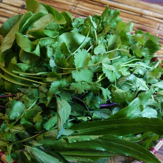たっぷりの生野菜がとれる!ヘルシーベトナム料理