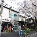 尾原商店 - 店舗前に桜が!