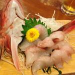 よいち - 料理写真:ホウボウのお刺身