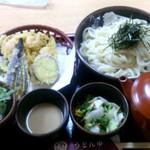 26091430 - 野菜天ざるうどん
