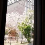 bar space - 西向きの窓からは、隣の公園の桜が見えます