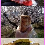 おやつの森 - シフォンケーキ
