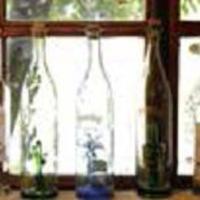 パラディゾ - 小窓2
