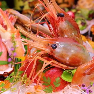 北海道新鮮魚貝と九州厳選旨肉