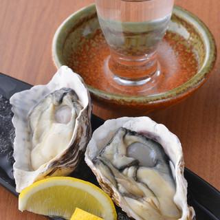 毎日空輸!北海道仙鳳趾(せんぽうし)産生牡蠣ご賞味下さい!