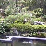ロビーラウンジ ゆい - 庭