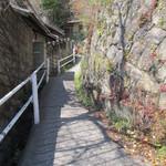 空猫カフェ - 千光寺公園への登り坂