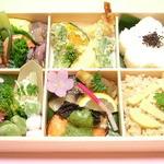 活魚料理 待多郎 - <花見弁当>お持ち帰りのみのご用意となります。 2,160円