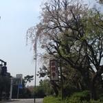 26370755 - 外観1(桜が綺麗でした)※右端に新宿の「ドコモタワー」が見えます。