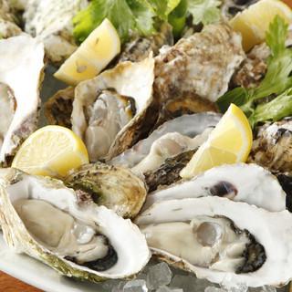 全国各地より旬の生牡蠣が入荷