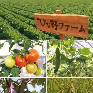 """""""有機栽培のお野菜をご提供"""""""