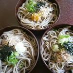 松本蕎麦店 - 楽三割子そば 720円 三種類の薬味(おろし、もみじおろし、わさび)