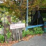 mackerel sky - 駐車場